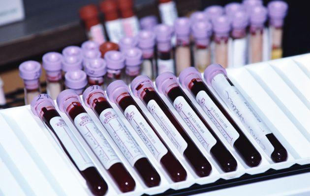 Норма анализа крови пса